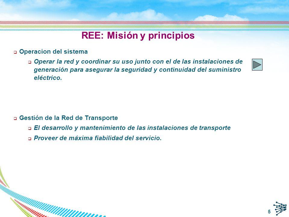 REE: Misión y principios