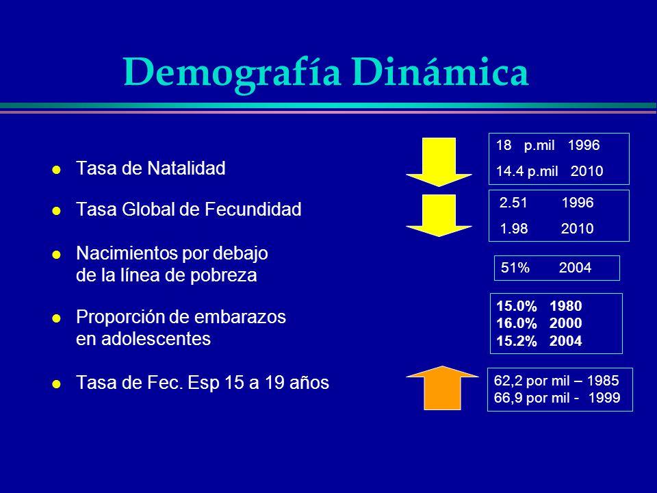 Demografía Dinámica Tasa de Natalidad Tasa Global de Fecundidad