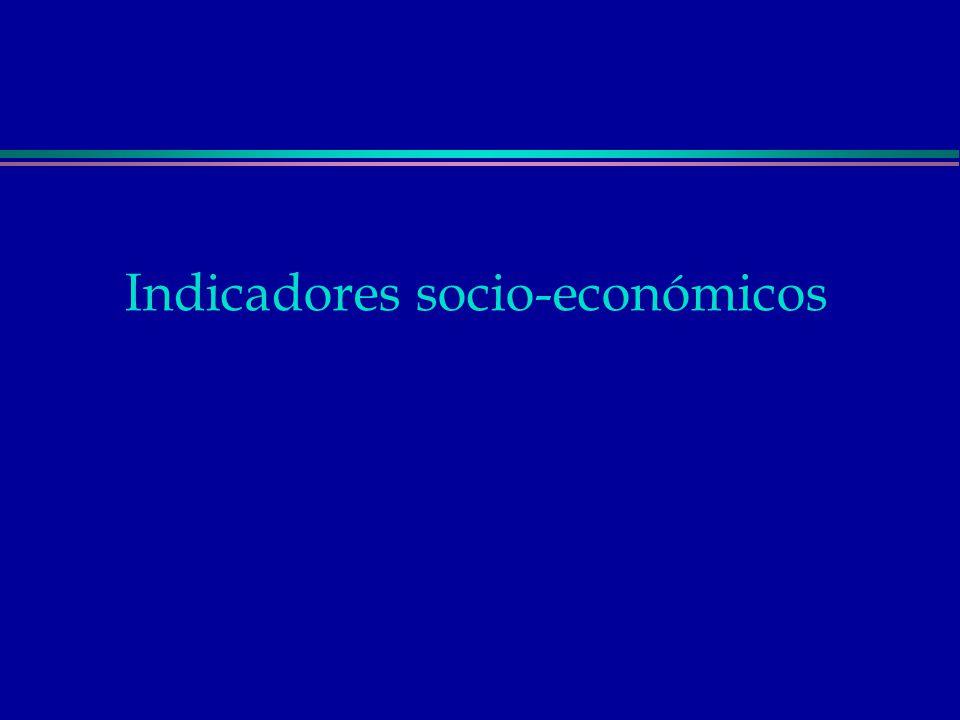 Indicadores socio-económicos