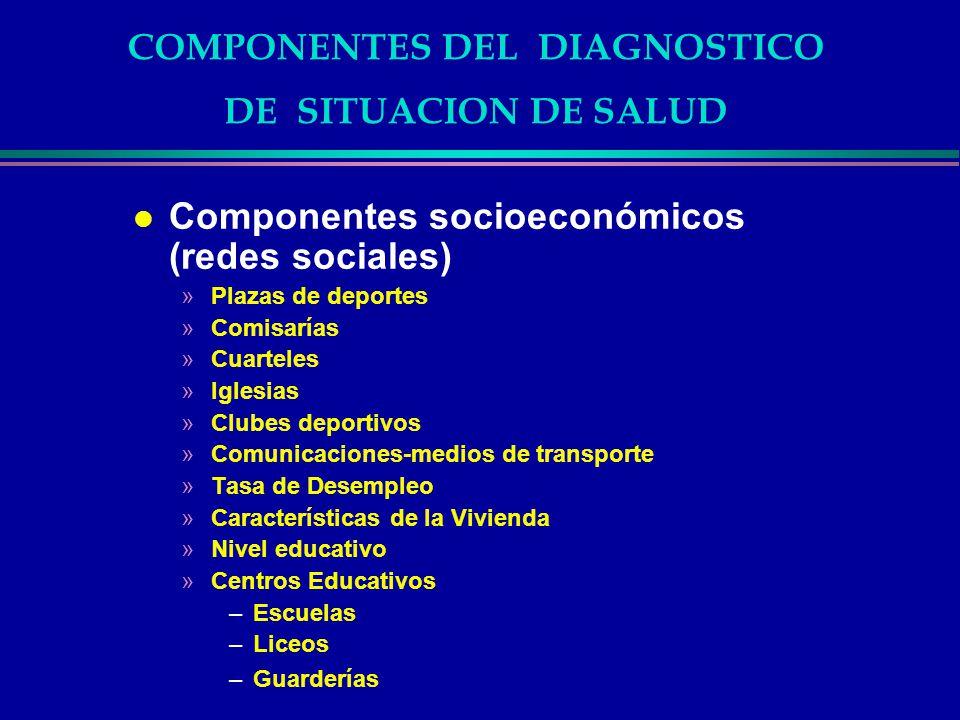 COMPONENTES DEL DIAGNOSTICO DE SITUACION DE SALUD