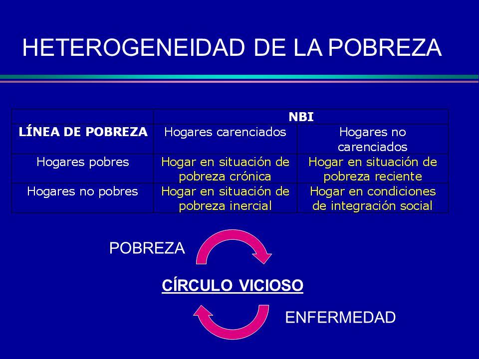 HETEROGENEIDAD DE LA POBREZA