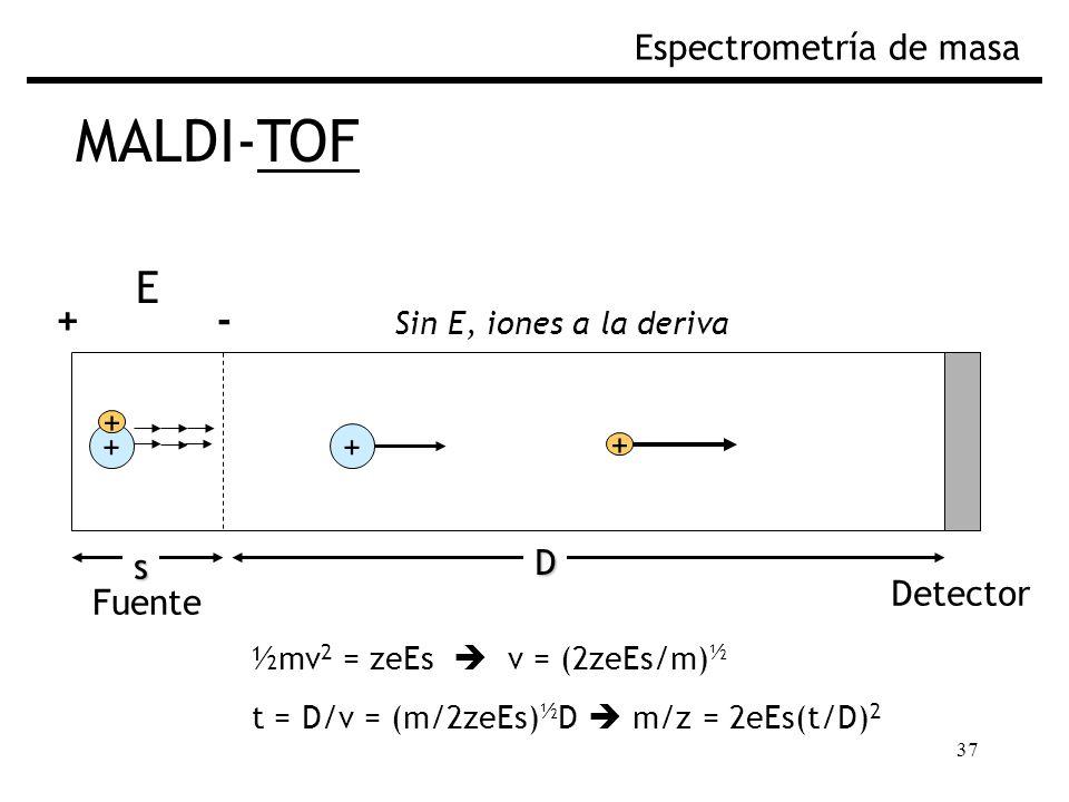 MALDI-TOF E + - Espectrometría de masa Fig. Separación por TOF + + + +