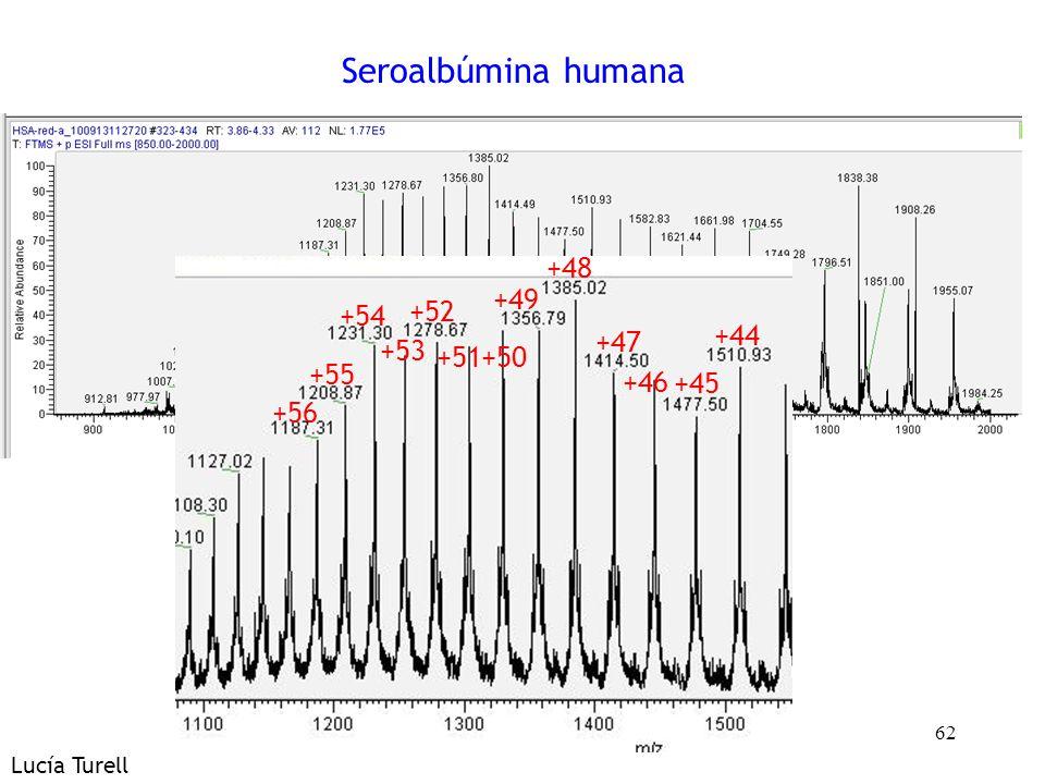 Seroalbúmina humana +45 +44 +47 +46 +49 +48 +51 +50 +52 +54 +53 +56
