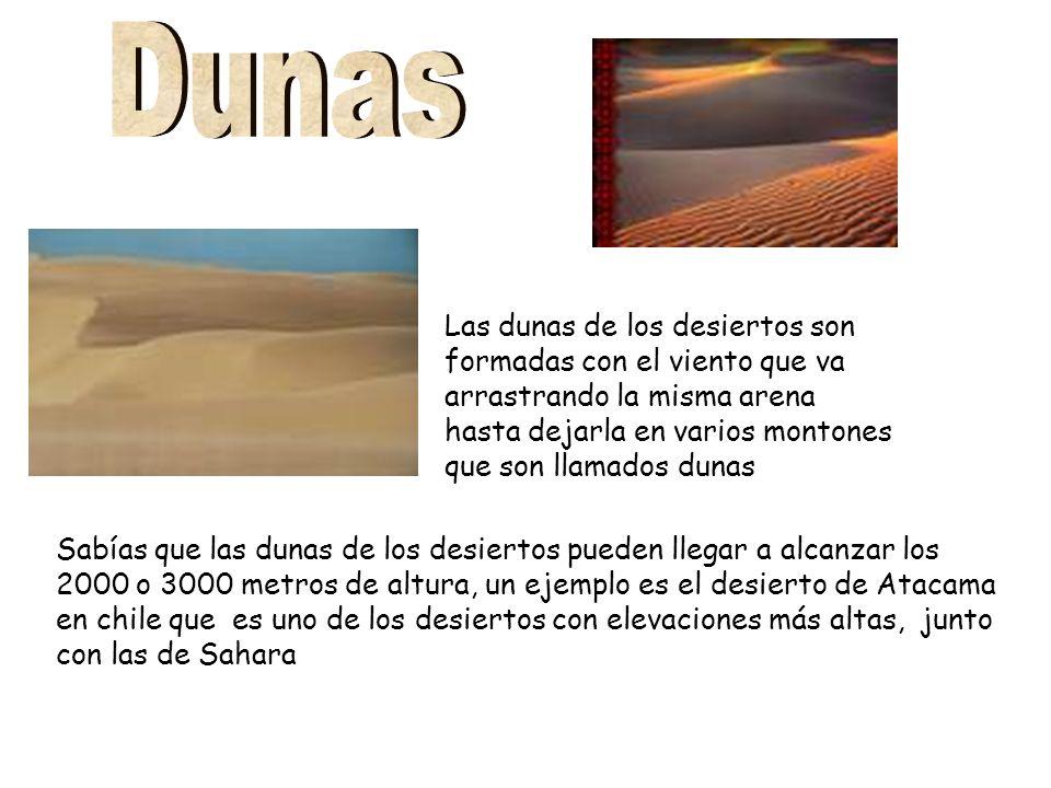 Dunas Las dunas de los desiertos son formadas con el viento que va arrastrando la misma arena hasta dejarla en varios montones que son llamados dunas.