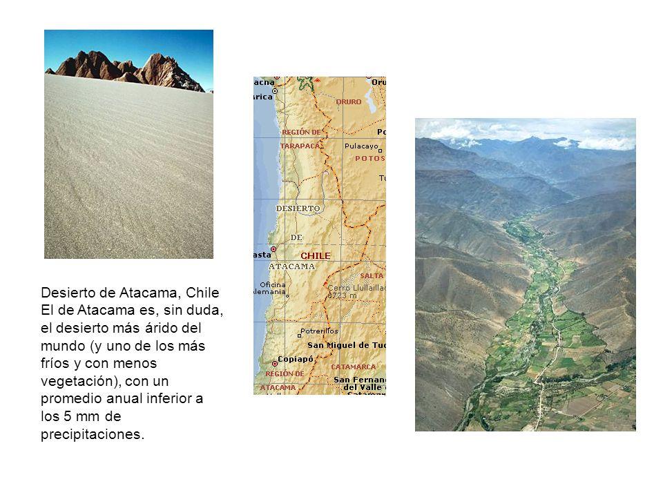 Desierto de Atacama, Chile El de Atacama es, sin duda, el desierto más árido del mundo (y uno de los más fríos y con menos vegetación), con un promedio anual inferior a los 5 mm de precipitaciones.