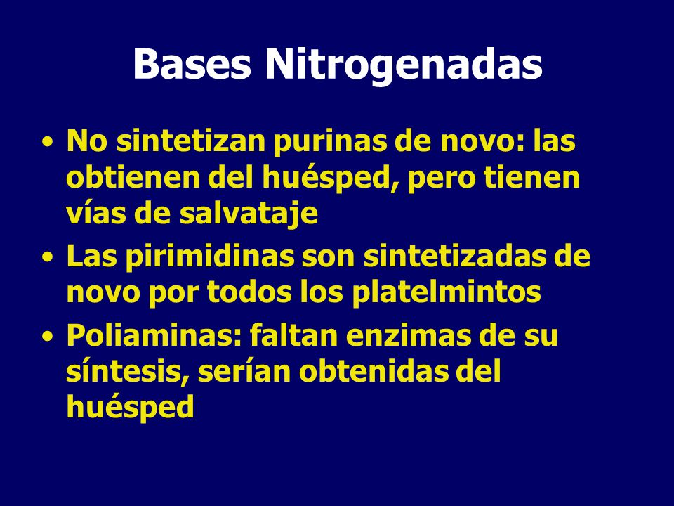 Bases Nitrogenadas No sintetizan purinas de novo: las obtienen del huésped, pero tienen vías de salvataje.