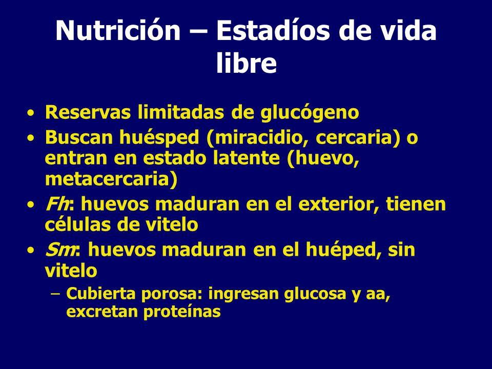 Nutrición – Estadíos de vida libre