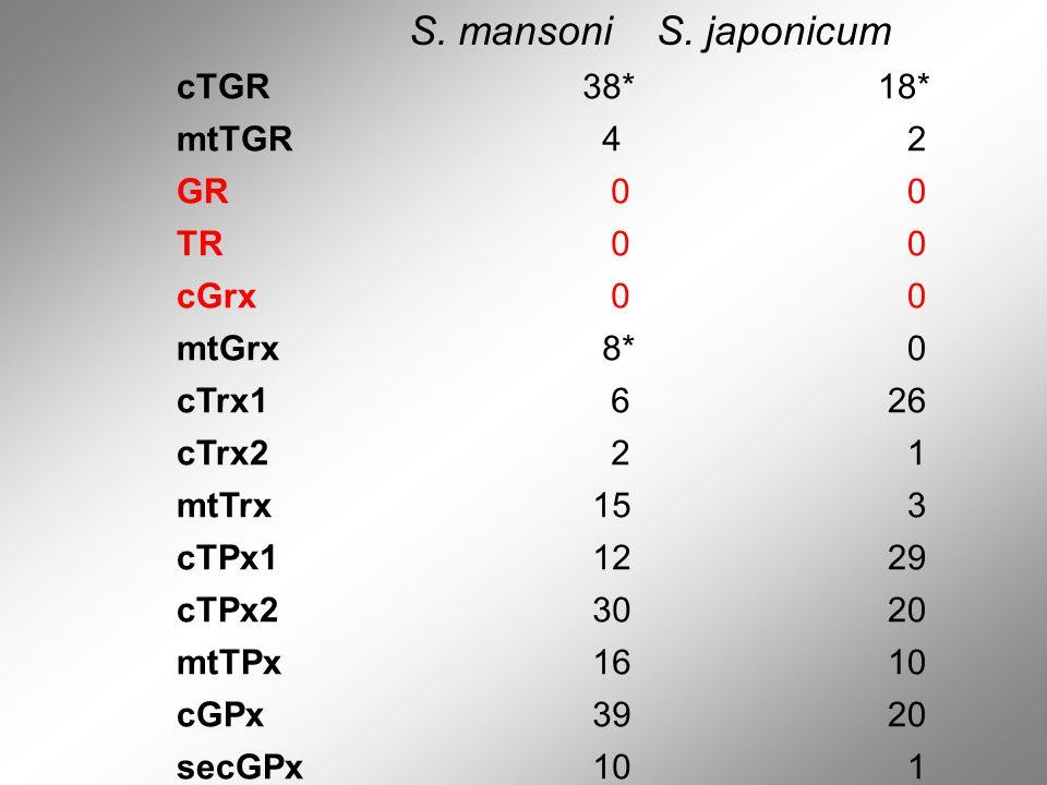 S. mansoni S. japonicum cTGR 38* 18* mtTGR 4 2 GR TR cGrx mtGrx 8*