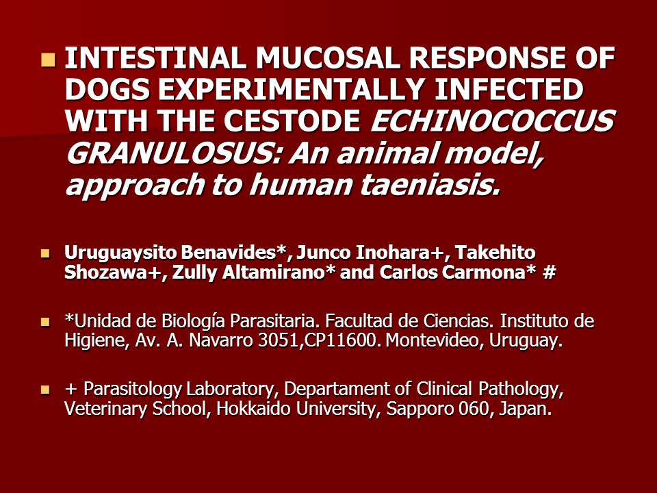 INTESTINAL MUCOSAL RESPONSE OF DOGS EXPERIMENTALLY INFECTED WITH THE CESTODE ECHINOCOCCUS GRANULOSUS: An animal model, approach to human taeniasis.