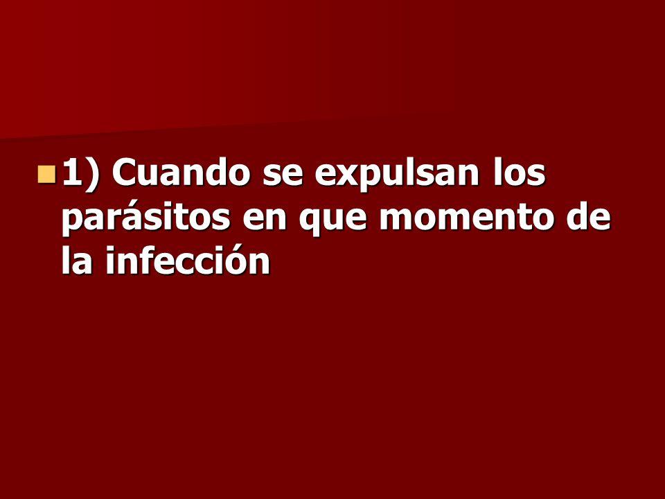 1) Cuando se expulsan los parásitos en que momento de la infección