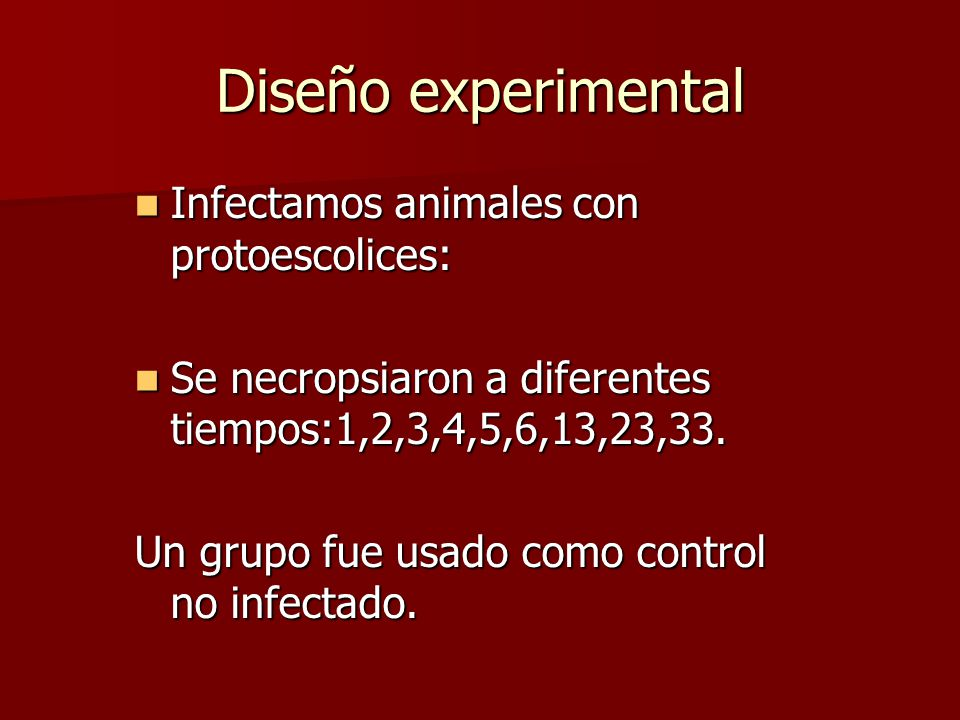 Diseño experimental Infectamos animales con protoescolices: