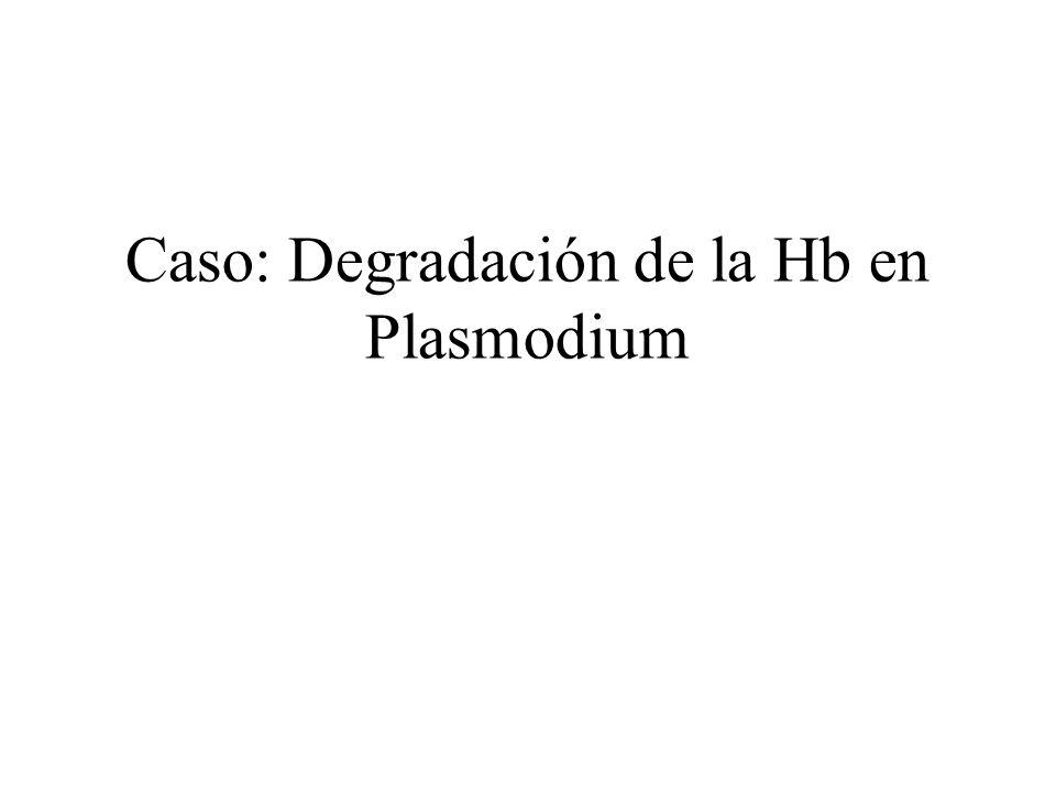 Caso: Degradación de la Hb en Plasmodium
