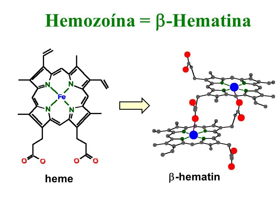 Hemozoína = b-Hematina