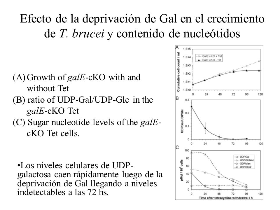 Efecto de la deprivación de Gal en el crecimiento de T