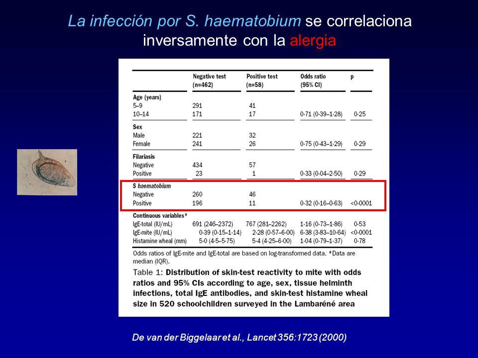 La infección por S. haematobium se correlaciona inversamente con la alergia