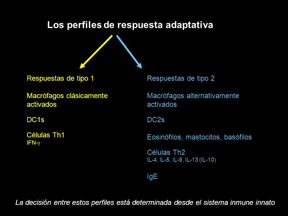 Los perfiles de respuesta adaptativa