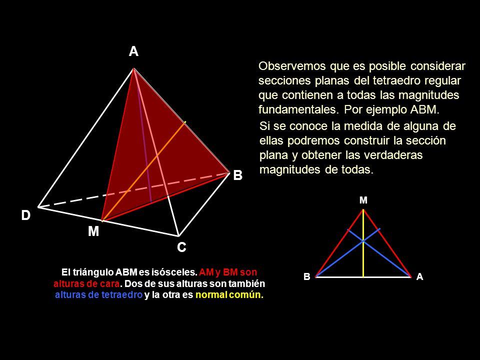 alturas de tetraedro y la otra es normal común.
