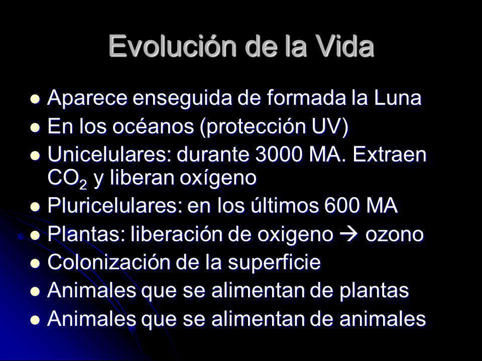Evolución de la Vida Aparece enseguida de formada la Luna