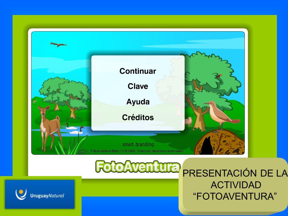 PRESENTACIÓN DE LA ACTIVIDAD FOTOAVENTURA
