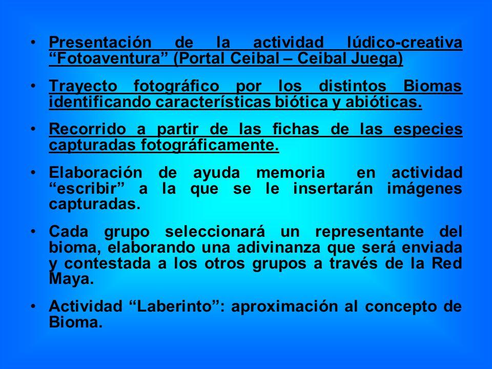 Presentación de la actividad lúdico-creativa Fotoaventura (Portal Ceibal – Ceibal Juega)