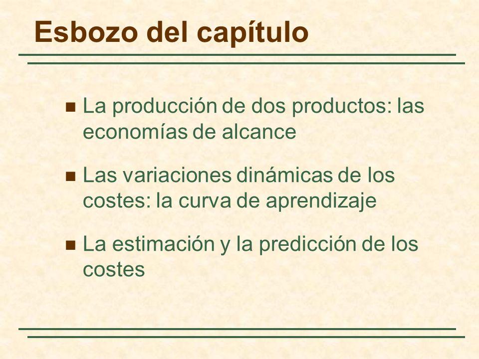 Esbozo del capítulo La producción de dos productos: las economías de alcance. Las variaciones dinámicas de los costes: la curva de aprendizaje.