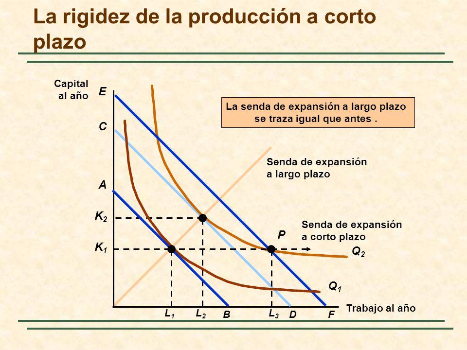 La rigidez de la producción a corto plazo
