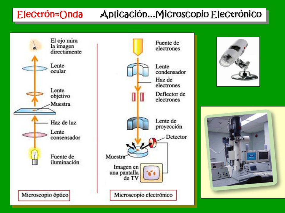 Electrón=Onda Aplicación...Microscopio Electrónico