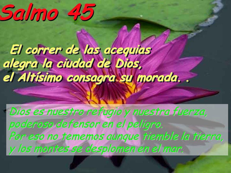 Salmo 45 El correr de las acequias alegra la ciudad de Dios,
