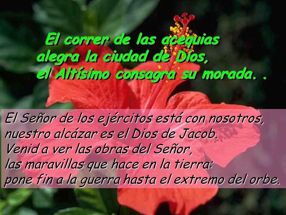 El correr de las acequias alegra la ciudad de Dios,