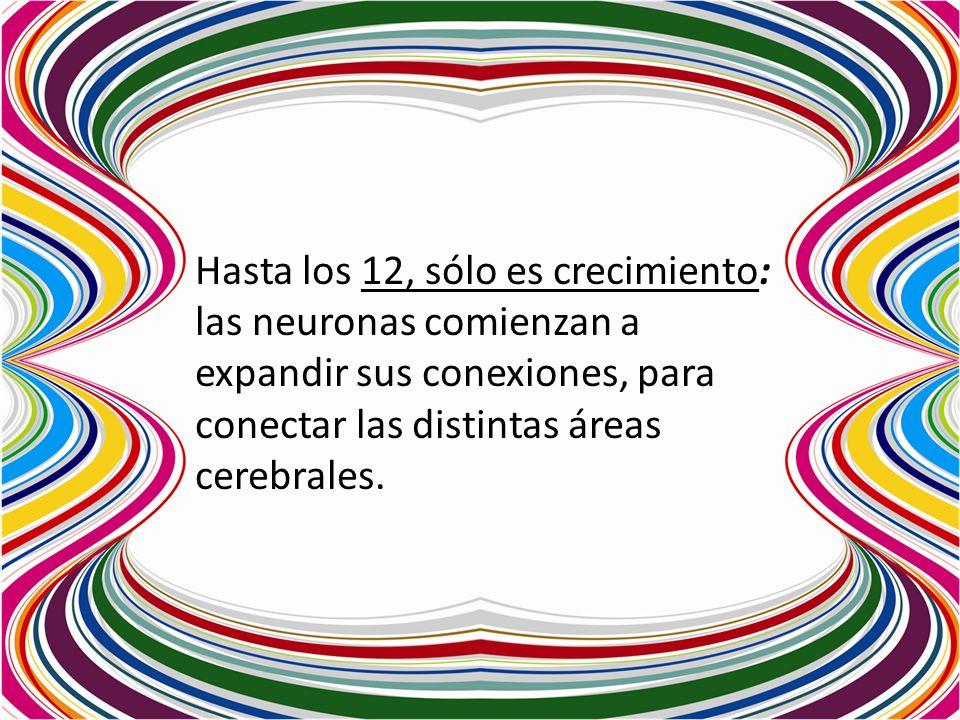 Hasta los 12, sólo es crecimiento: las neuronas comienzan a expandir sus conexiones, para conectar las distintas áreas cerebrales.