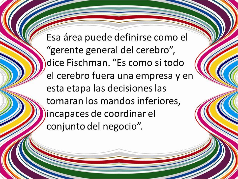 Esa área puede definirse como el gerente general del cerebro , dice Fischman.