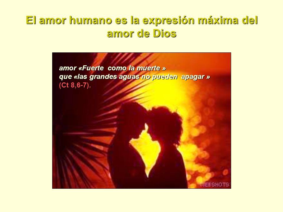 El amor humano es la expresión máxima del amor de Dios