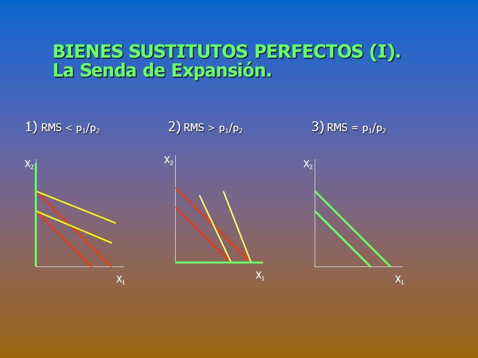 BIENES SUSTITUTOS PERFECTOS (I). La Senda de Expansión.