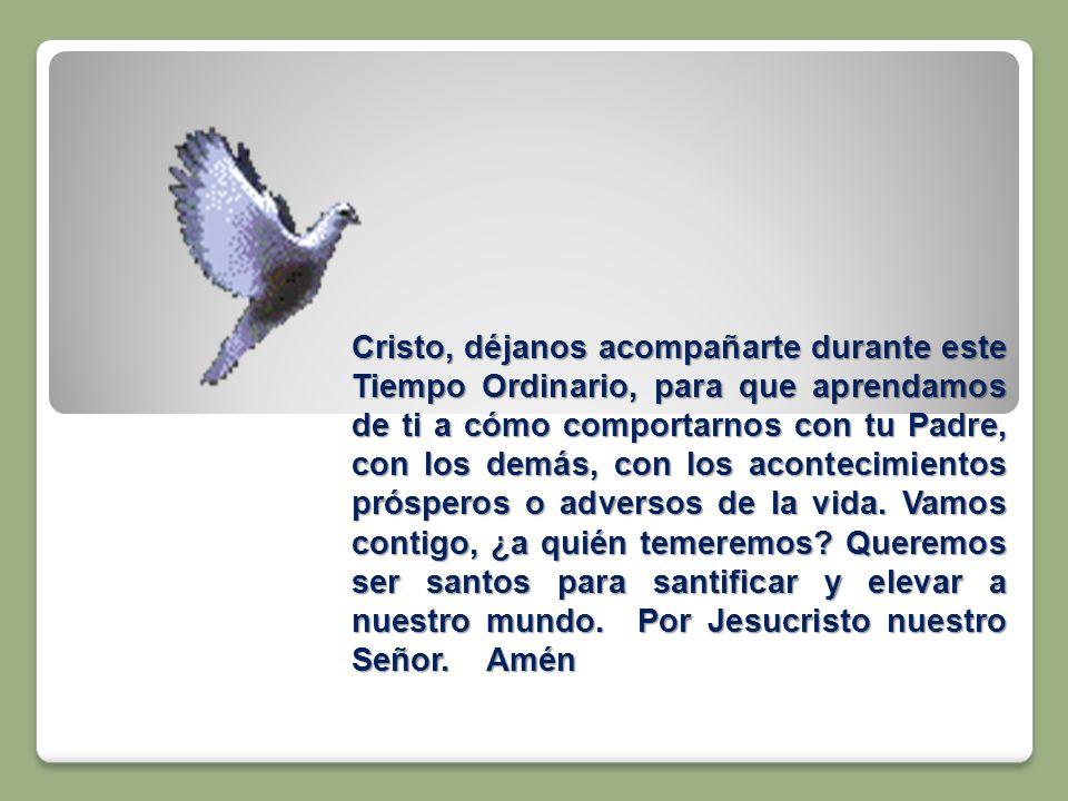 Cristo, déjanos acompañarte durante este Tiempo Ordinario, para que aprendamos de ti a cómo comportarnos con tu Padre, con los demás, con los acontecimientos prósperos o adversos de la vida.
