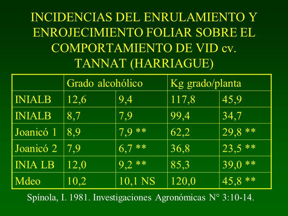 INCIDENCIAS DEL ENRULAMIENTO Y ENROJECIMIENTO FOLIAR SOBRE EL COMPORTAMIENTO DE VID cv. TANNAT (HARRIAGUE)