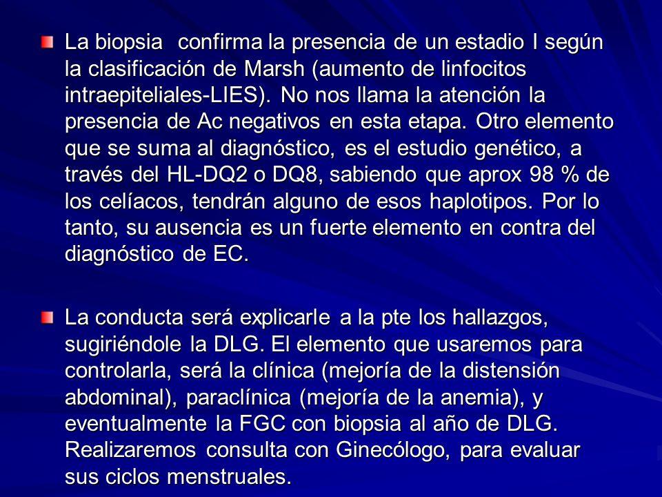 La biopsia confirma la presencia de un estadio I según la clasificación de Marsh (aumento de linfocitos intraepiteliales-LIES). No nos llama la atención la presencia de Ac negativos en esta etapa. Otro elemento que se suma al diagnóstico, es el estudio genético, a través del HL-DQ2 o DQ8, sabiendo que aprox 98 % de los celíacos, tendrán alguno de esos haplotipos. Por lo tanto, su ausencia es un fuerte elemento en contra del diagnóstico de EC.