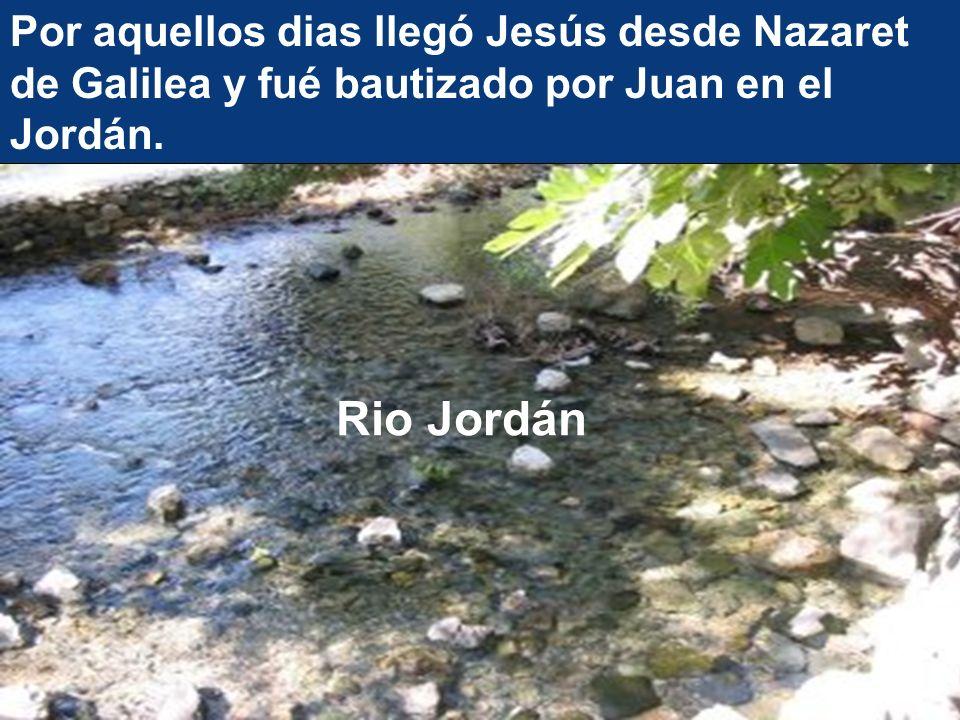 Por aquellos dias llegó Jesús desde Nazaret de Galilea y fué bautizado por Juan en el Jordán.