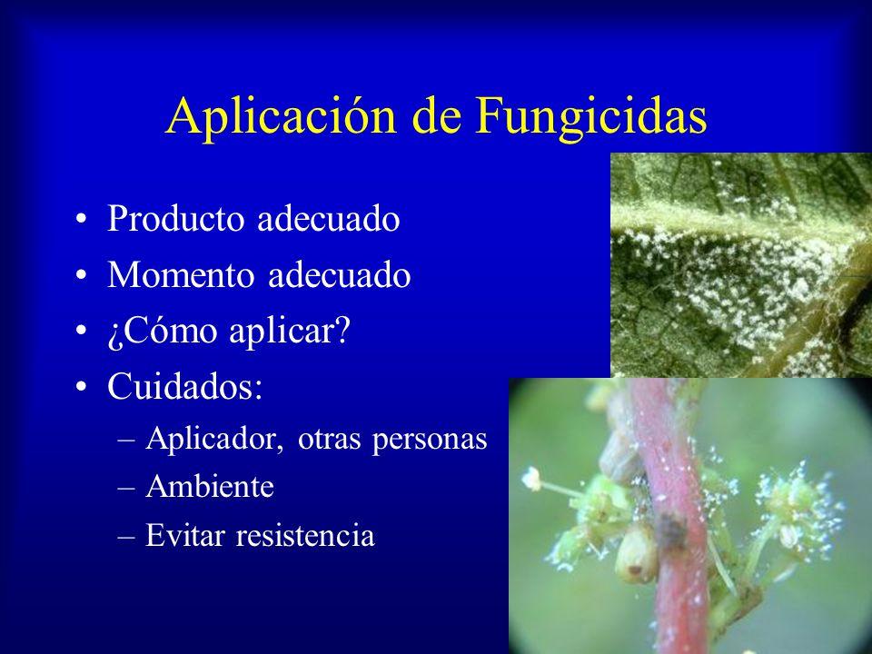 Aplicación de Fungicidas
