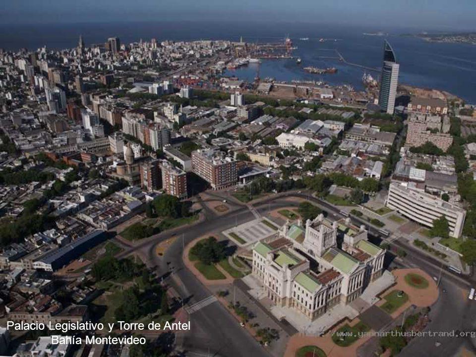 Palacio Legislativo y Torre de Antel