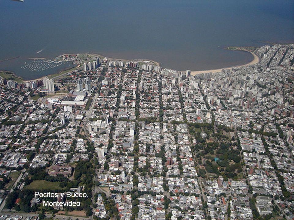 Pocitos y Buceo, Montevideo