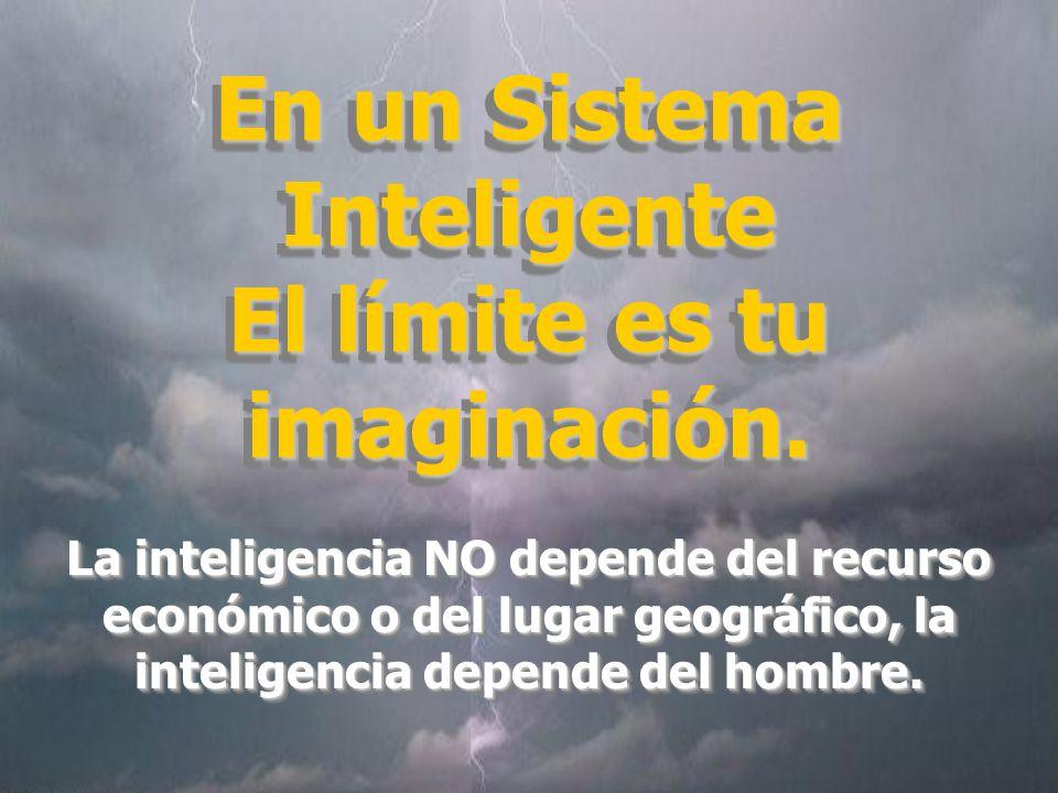 En un Sistema Inteligente El límite es tu imaginación.