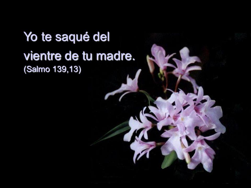 Yo te saqué del vientre de tu madre. (Salmo 139,13)