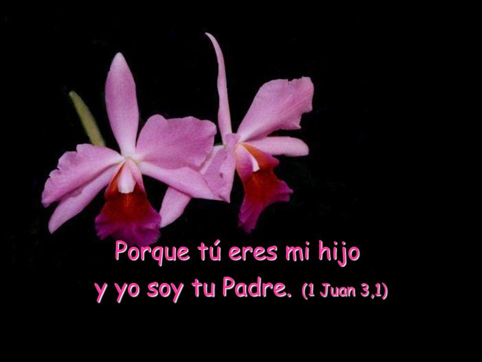 Porque tú eres mi hijo y yo soy tu Padre. (1 Juan 3,1)