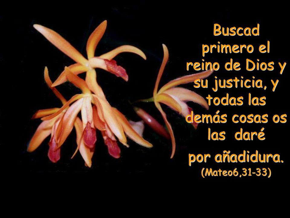 Buscad primero el reino de Dios y su justicia, y todas las demás cosas os las daré por añadidura.