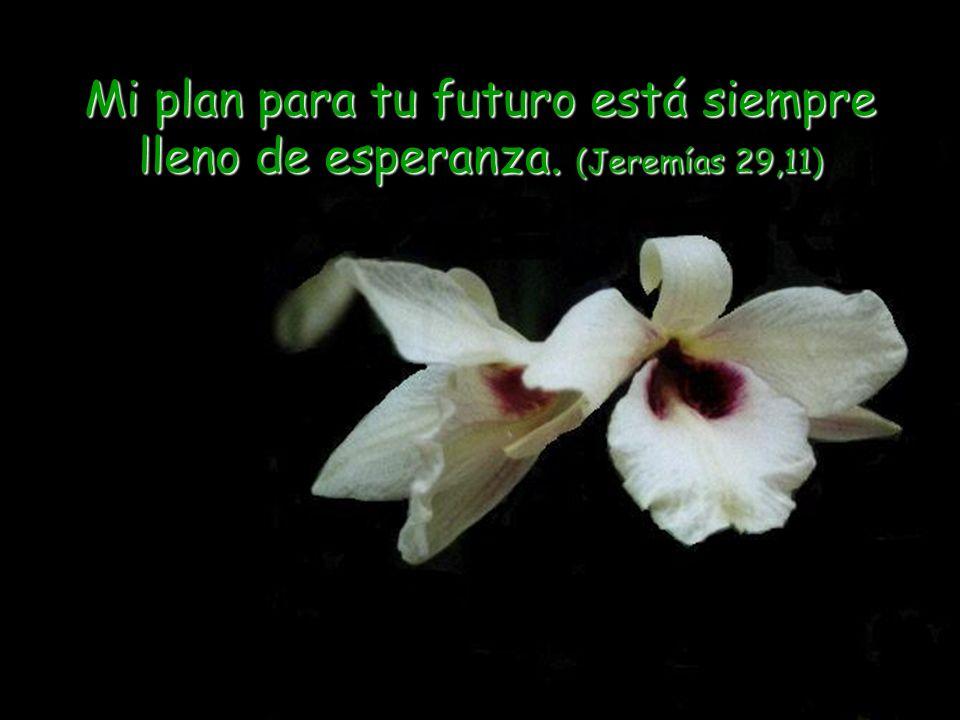 Mi plan para tu futuro está siempre lleno de esperanza