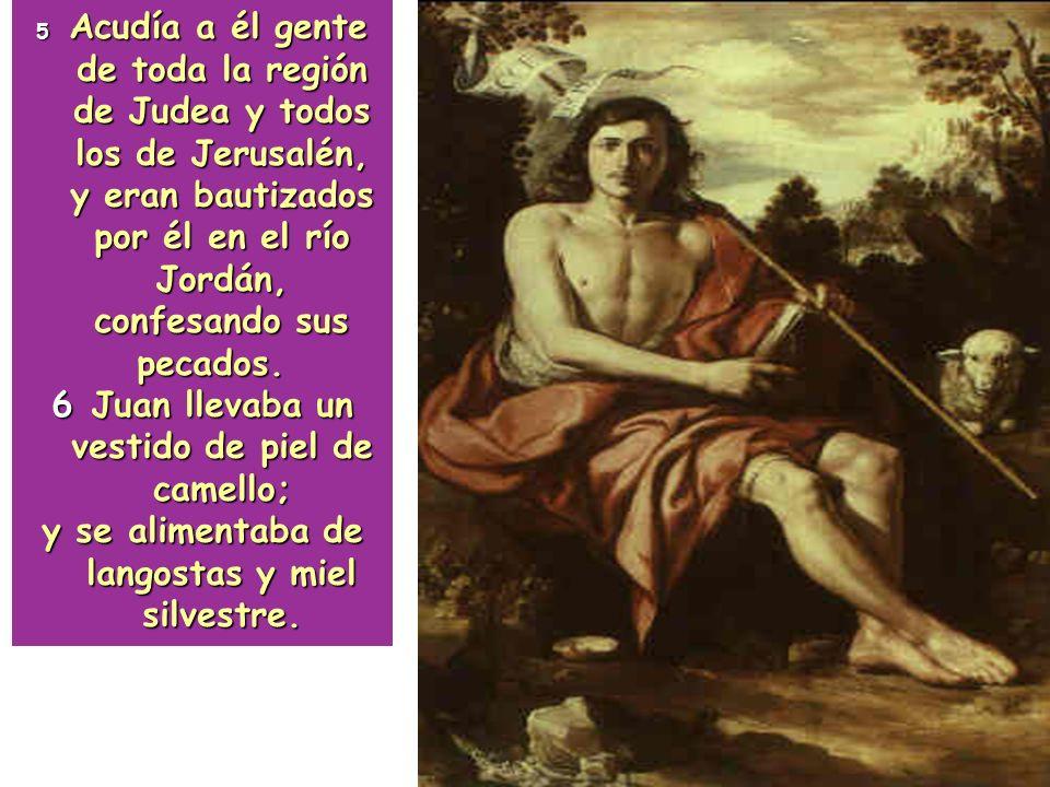 6 Juan llevaba un vestido de piel de camello;