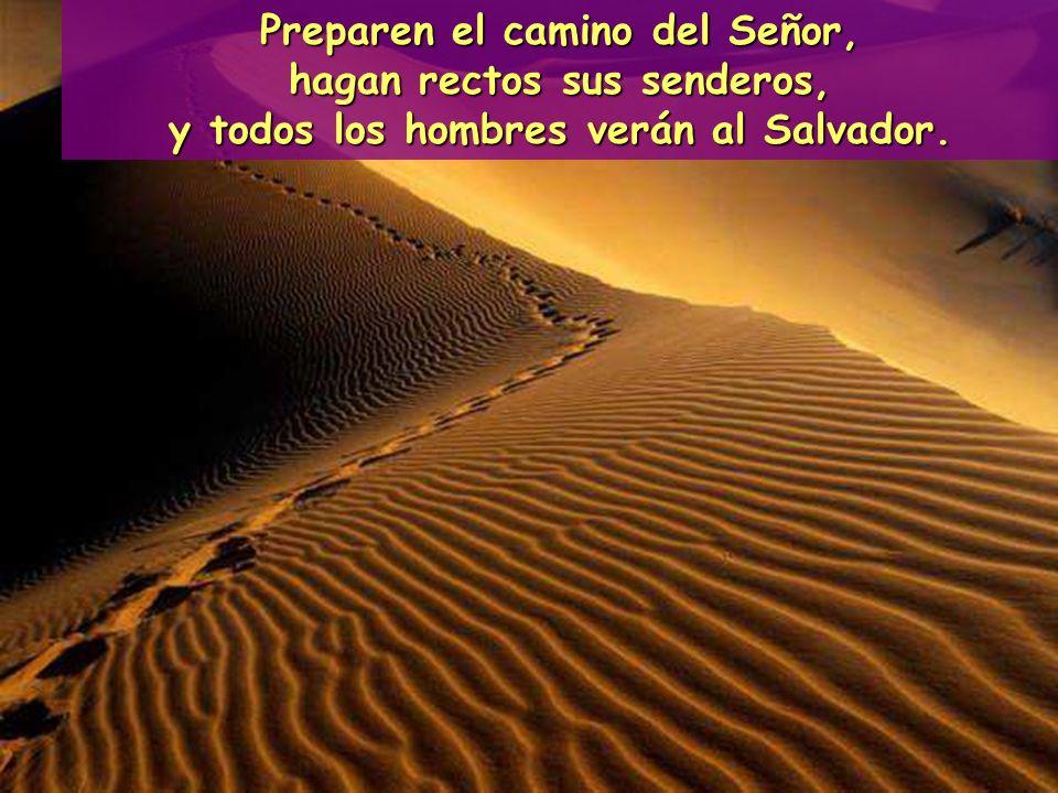 Preparen el camino del Señor, hagan rectos sus senderos,