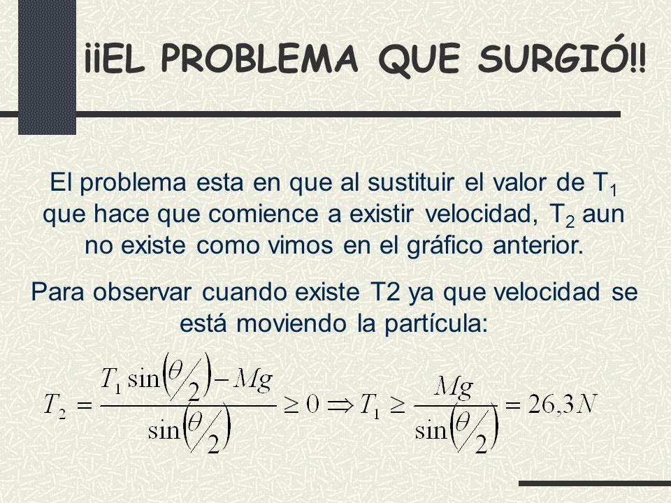 ¡¡EL PROBLEMA QUE SURGIÓ!!