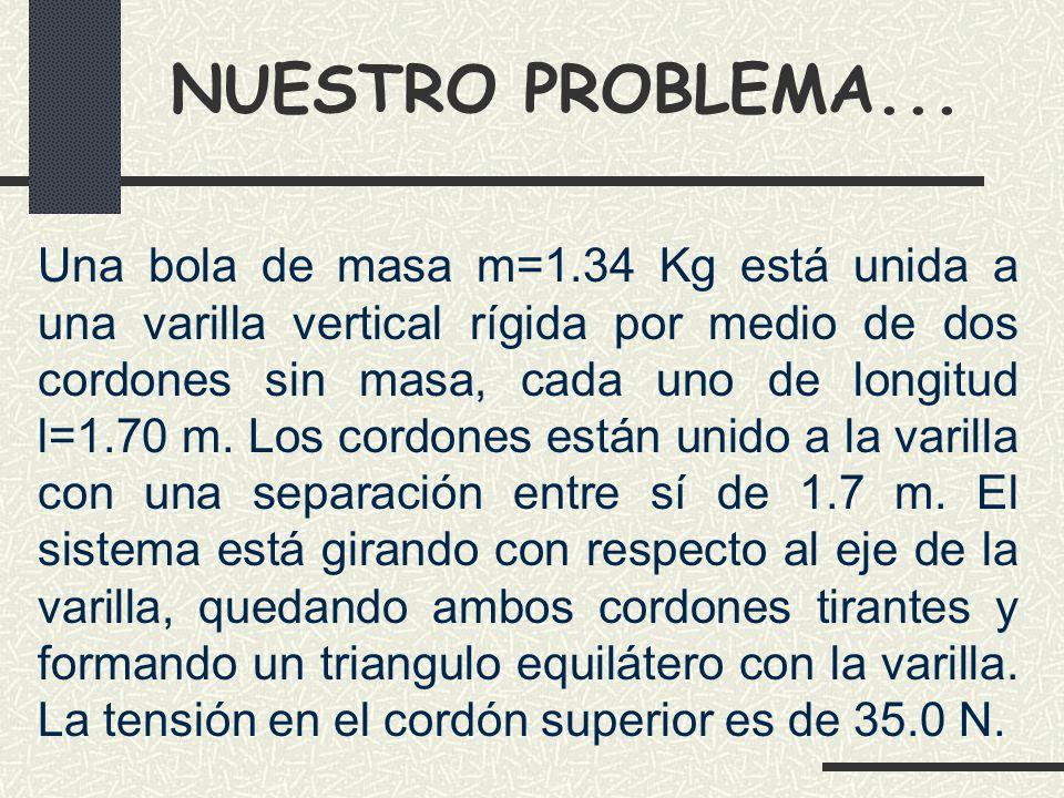 NUESTRO PROBLEMA...