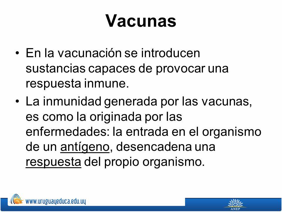 Vacunas En la vacunación se introducen sustancias capaces de provocar una respuesta inmune.